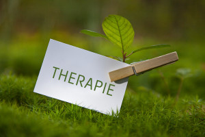 FORMATION EN THERAPIE COMPORTEMENTALE ET COGNITIVE